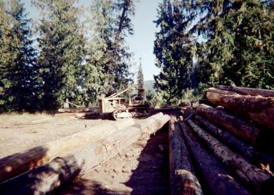 D8-Logging