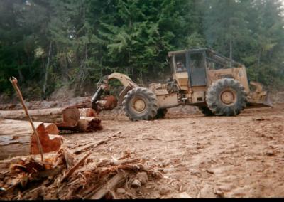 Skidding-Cedar-Log